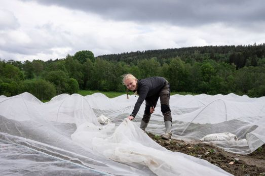 1906_©MelissaHegge_SolbergAndelsgård-702